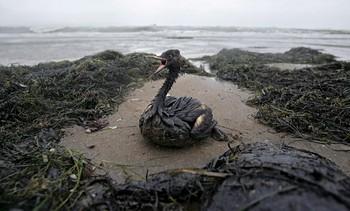 Отпадъците от миннодобивна дейност в Черно море – без контрол