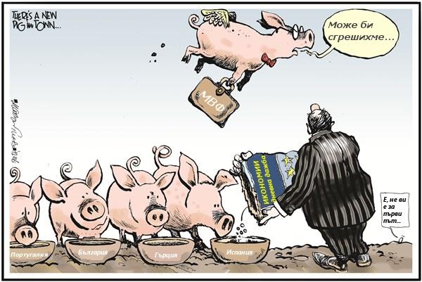 IMF_pigs1